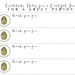 Gratitude Notes/Grateful Jar