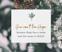 You Can't Lose Hope