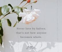 Never Love By Halves
