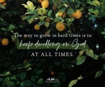 The way to grow in hard times