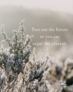 Fear not the future